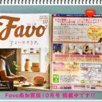FAVOの2019年10月号表紙画像